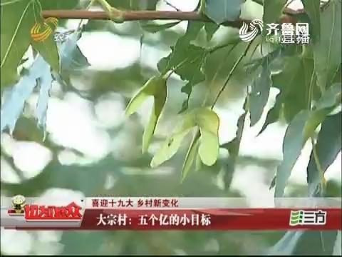 【喜迎十九大 乡村新变化】大宗村:五个亿的小目标