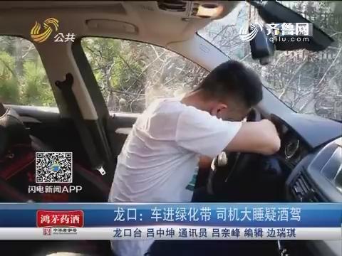 龙口:车进绿化带 司机大睡疑酒驾