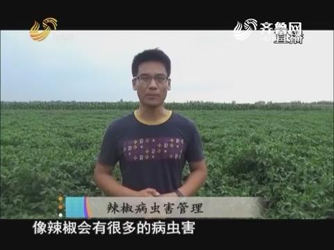 20170807《当前农事》:花生褐斑病