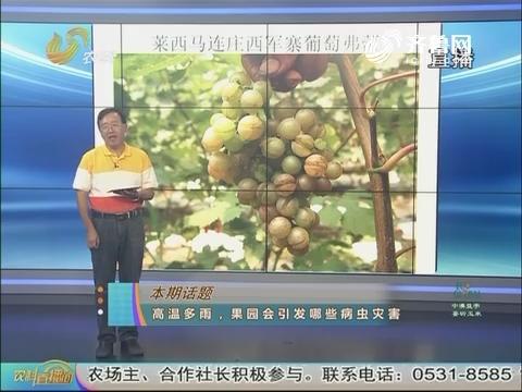 20170807《农科tb988间》:高温多雨 果园会引发哪些病虫害灾害
