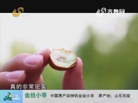 20170808《中国原产递》:金丝小枣