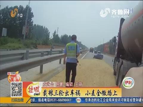 【凡人善举】菏泽:载粮三轮出车祸 小麦全撒路上