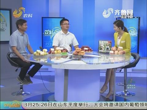 20170811《农科直播间》:看行情 聚焦2017年桃市场