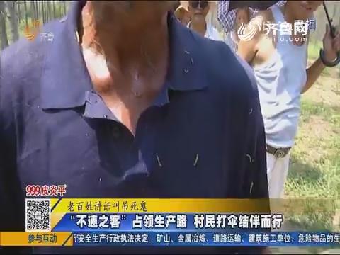 """济南:""""不速之客""""占领生产路 村民打伞结伴而行"""
