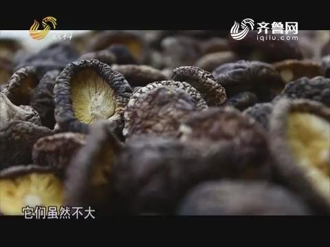 20170811《中国原产递》:庆元黑面菇