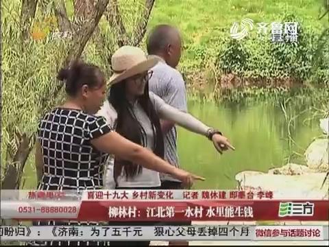 【喜迎十九大 乡村新变化】柳林村:江北第一水村 水里能生钱