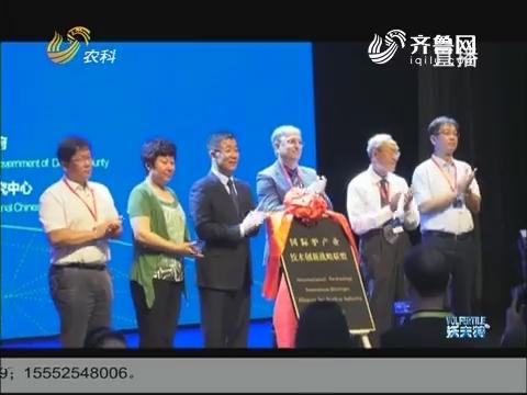 国际驴产业技术创新战略联盟成立