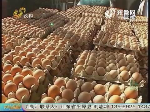 20170817《农科tb988间》:鸡蛋配送 逆势增效益