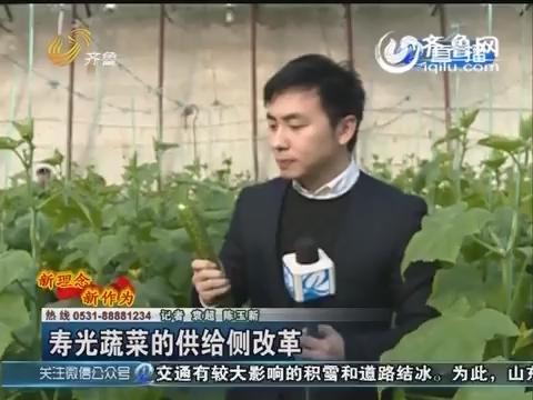 新概念新作为:寿光蔬菜的供给侧改革