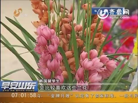 潍坊青州:年味山东 中国年让人想家