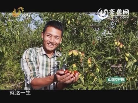 20160205《中国原产递》:灵武长枣