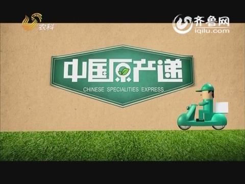 20160208《中国原产递》:新疆阿克苏骏枣