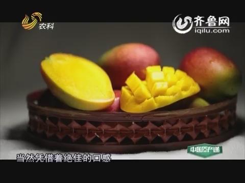 20160210《中国原产递》:三亚芒果