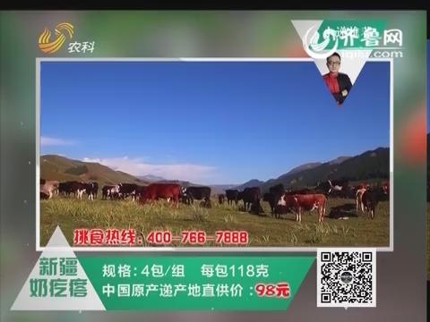 20160217《中国原产递》:新疆奶疙瘩