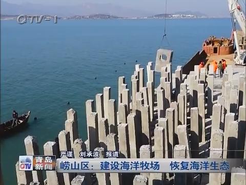 崂山区:建设海洋牧场 恢复海洋生态
