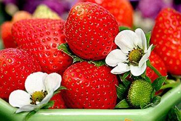 草莓挑选清洗有讲究