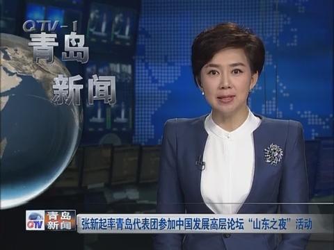 """张新起率青岛代表团参加中国发展高层论坛""""山东之夜""""活动"""