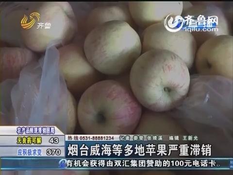 烟台威海等多地苹果严重滞销