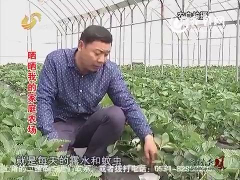 泗水县:晒晒我的家庭农场