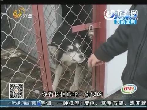 潍坊:卖家秀PK买家秀 差距忒大了