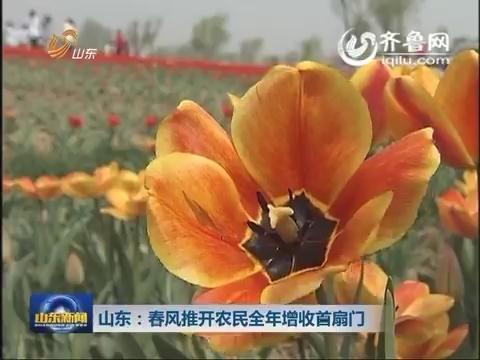 山东:春风推开农民全年增收首扇门