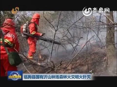 临朐县国有沂山林场森林火灾明火扑灭