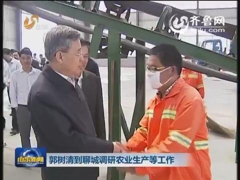 郭树清在聊城调研农业生产等工作