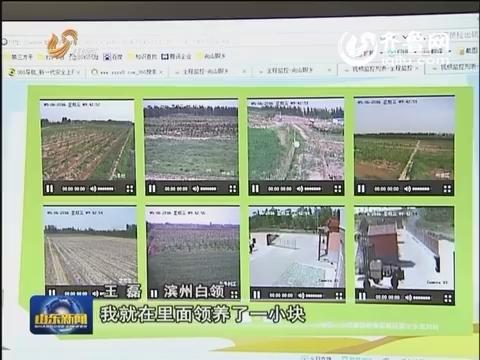 滨州:电商重设农业路