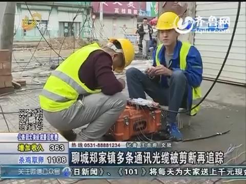 跑政事:聊城郑家镇多条通讯光缆被剪断再追踪
