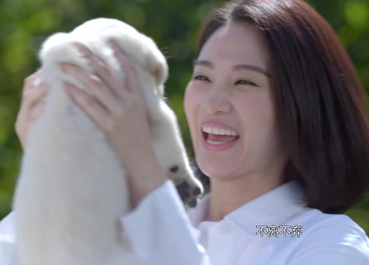 8月1日龙都longdu66龙都娱乐卫视《警花与警犬》开播 燃烧热血年华