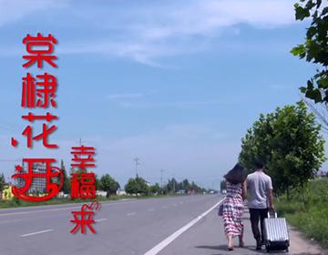 微电影《棠棣花开幸福来》(农业银行)