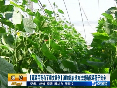 潍坊出台地方法规确保菜篮子安全