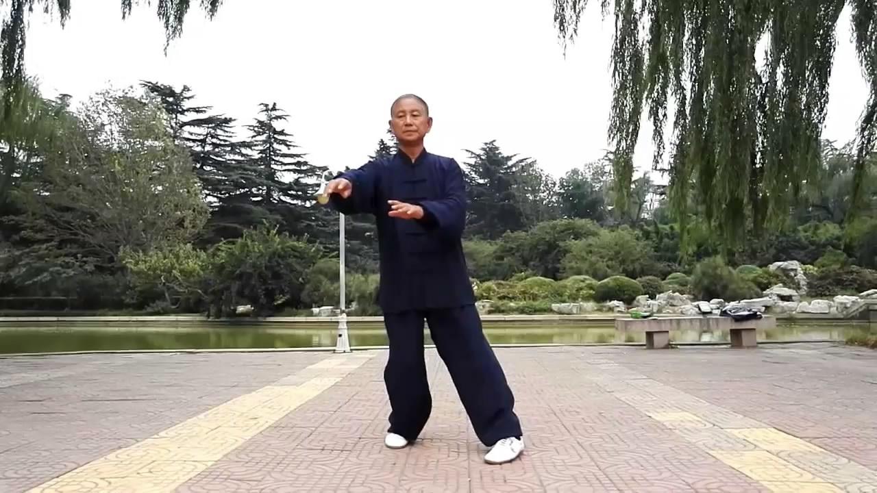 杨式太极拳精炼28式(表演者:呼兆玉)