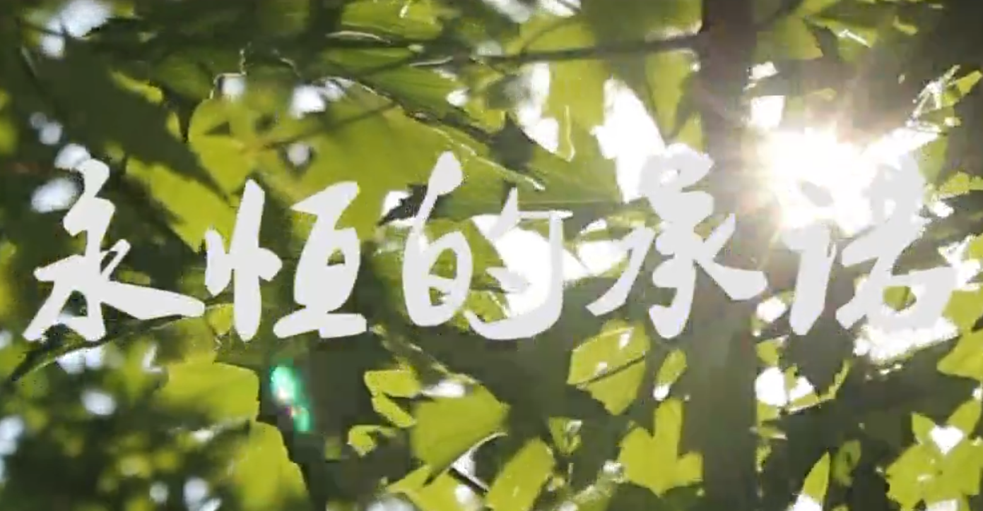 微电影《永恒的承诺》(中国人寿)