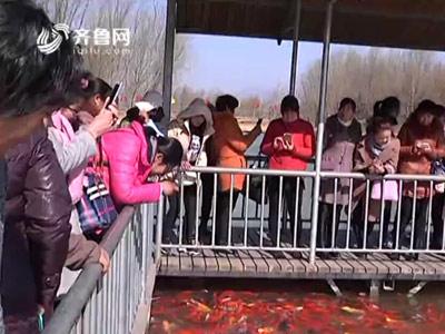 """齐鲁网携手泰安地下龙宫举办""""三八""""节关爱妇女行动"""