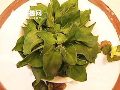 泰城野菜美食节:盘点宝龙福朋花样野菜美食