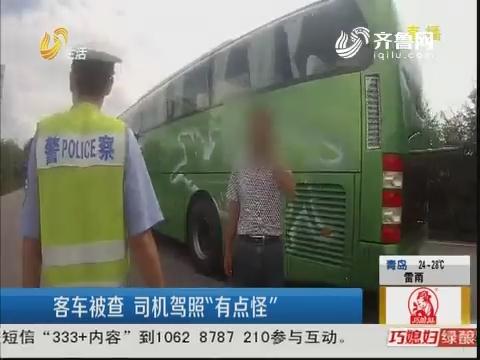 """青岛:客车被查 司机驾照""""有点怪"""""""