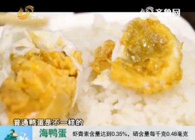 20170817《中国原产递》:海鸭蛋