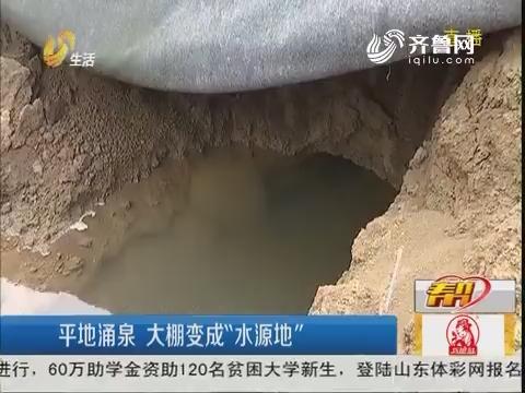 """潍坊:平地涌泉 大棚变成""""水源地"""""""