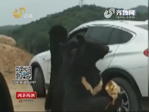 八达岭野生动物园 游客被熊咬伤手臂