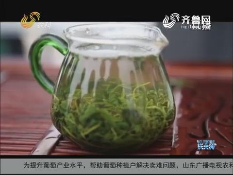 山东绿茶再添新贵