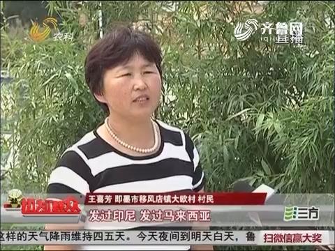 【喜迎十九大 乡村新变化】大欧村:当农村大姨干了淘宝店主