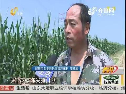 """滨州:面对小蜗牛 村民们""""束手无策""""?"""