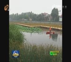 """山东全面开展2017年""""清河行动"""""""