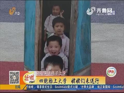 淄博:四胞胎上大学 姥姥们来送行