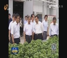 张新起带队调研黄河三角洲生态环境保护工作