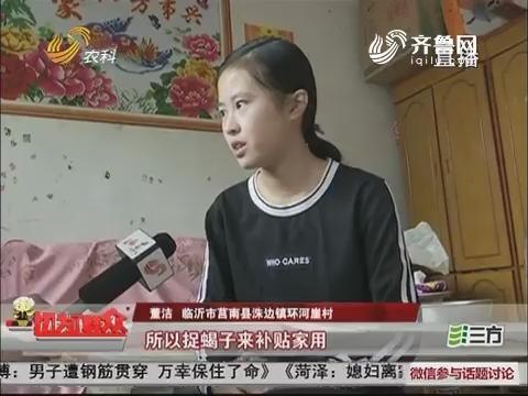 临沂:为父看病!14岁女孩上山捉蝎子