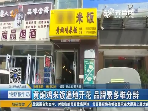 济南:黄焖鸡米饭遍地开花 品牌繁多难分辨