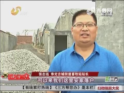 【过桥行动】寿光:政府适养区内给养殖场建新家