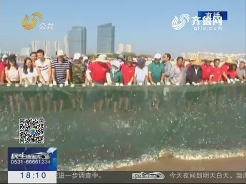 青岛:众人拉网捕鱼乐翻天